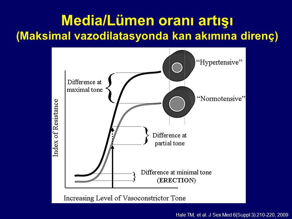 Media/Lümen oranı artışı (Maksimal vazodilatasyonda kan akımına direnç) Hale TM, et al. J Sex Med 6(Suppl 3):210-220, 2009