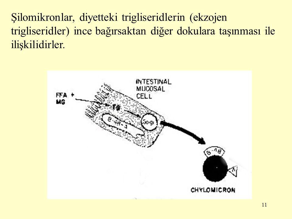 11 Şilomikronlar, diyetteki trigliseridlerin (ekzojen trigliseridler) ince bağırsaktan diğer dokulara taşınması ile ilişkilidirler.