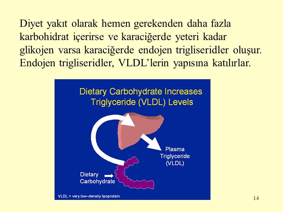 14 Diyet yakıt olarak hemen gerekenden daha fazla karbohidrat içerirse ve karaciğerde yeteri kadar glikojen varsa karaciğerde endojen trigliseridler oluşur.
