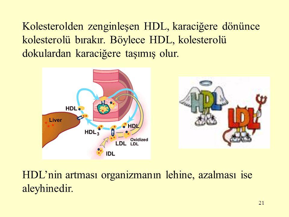 21 Kolesterolden zenginleşen HDL, karaciğere dönünce kolesterolü bırakır.