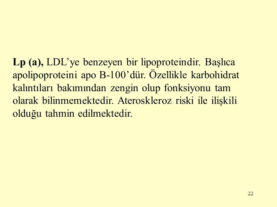 22 Lp (a), LDL'ye benzeyen bir lipoproteindir.Başlıca apolipoproteini apo B-100'dür.