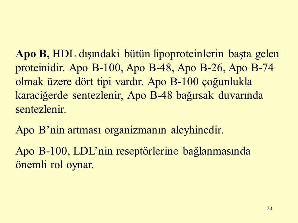 24 Apo B, HDL dışındaki bütün lipoproteinlerin başta gelen proteinidir.