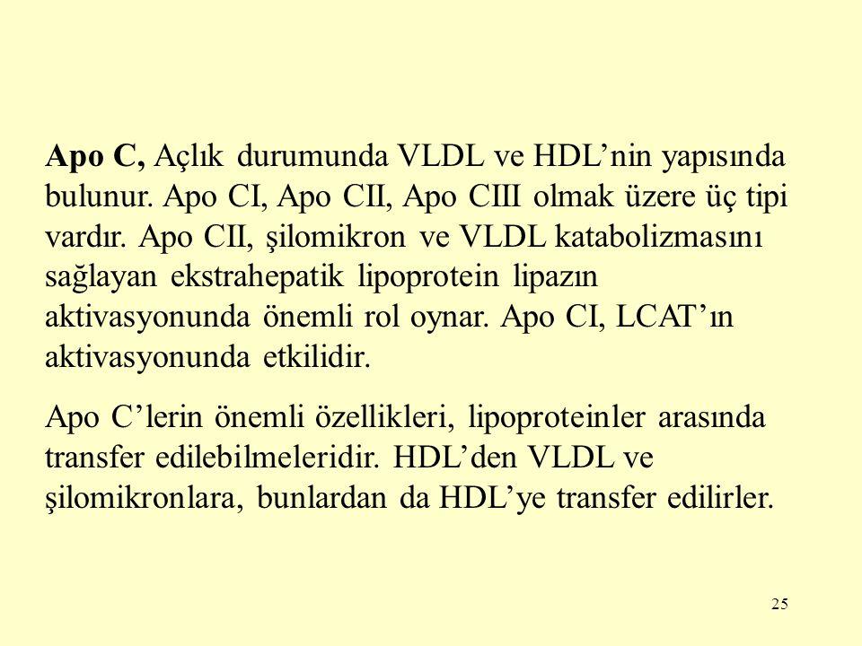 25 Apo C, Açlık durumunda VLDL ve HDL'nin yapısında bulunur.