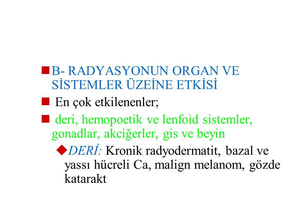 5- İrreversibl postmitotik hücreler: Diferansiasyonu tam olmakla beraber mitoz kabiliyetini yitirmiş hücreler  Kas, ganglion, lökosit, eritrosit, spe