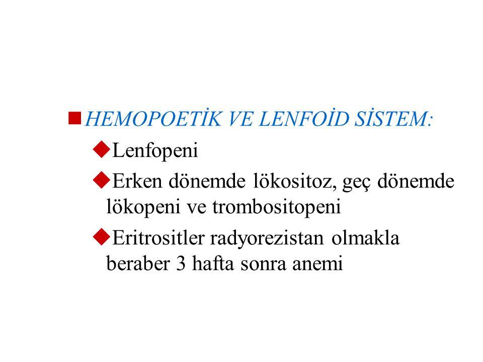 B- RADYASYONUN ORGAN VE SİSTEMLER ÜZEİNE ETKİSİ En çok etkilenenler; deri, hemopoetik ve lenfoid sistemler, gonadlar, akciğerler, gis ve beyin  DERİ: