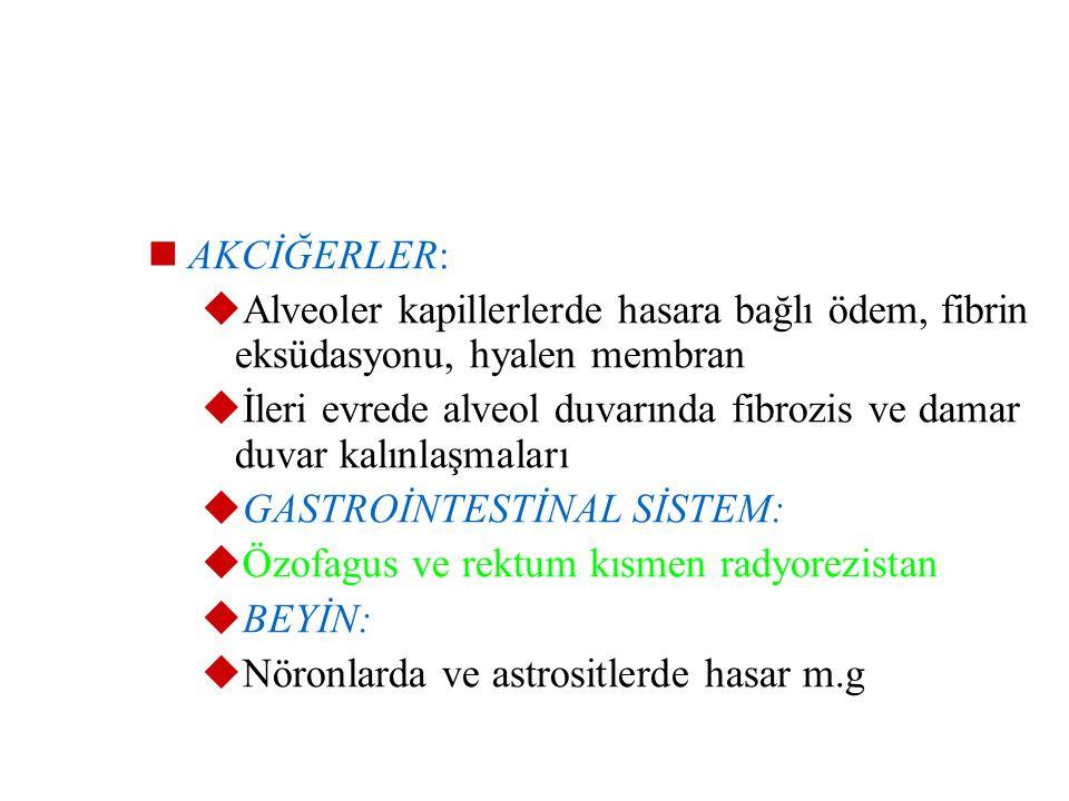 GONADLAR:  Genellikle sterilite o.ç  Sertoli hücreleri ve interstisyel hücreler radyorezistanttır  Overlerde germ h. ve granüloza h. sensitiv, uter
