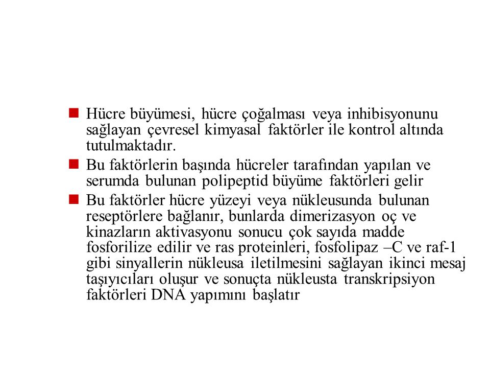 2- Sessiz hücreler (stabil, kc, böbrek ve pankreas gibi parankimatöz organlar, damar endotel hücreleri, düz kas ve fibroblast gibi mezankimal hücreler