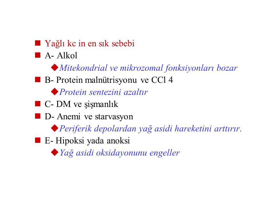 Trigliseritlerin aşırı birikimi: 1- Serbest yağ asitlerinin hücreye aşırı miktarlarda girmesi ( açlık, kortikosteroid) 2- Yağ asiti sentezinin artması