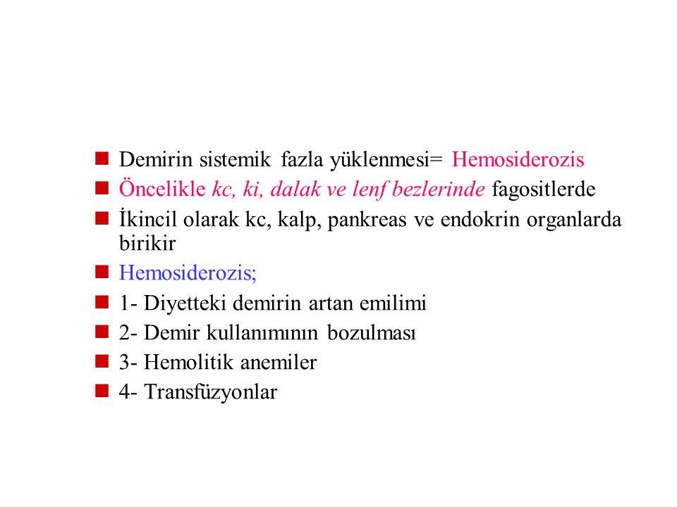 Lokal demir ve hemosiderin birikimi, küçük kanama sonucu mg (çürük, kontüzyon) kanama→eritrosit yıkımı→artıkların fagositozu→hemoglobinin lizozomlar i