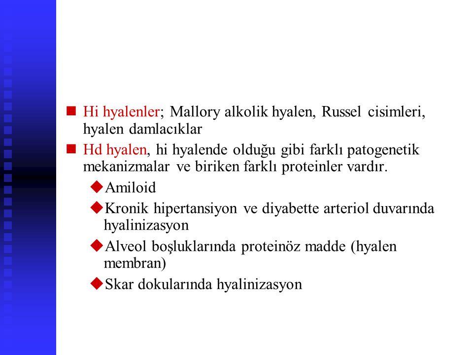 HYALEN DEĞİŞİM Hyalen, HE boyalı kesitlerde hi veya hd da görülen, homojen pembe renk dğişimine verilen isimdir Birçok nedenle ob, her durumda biriken