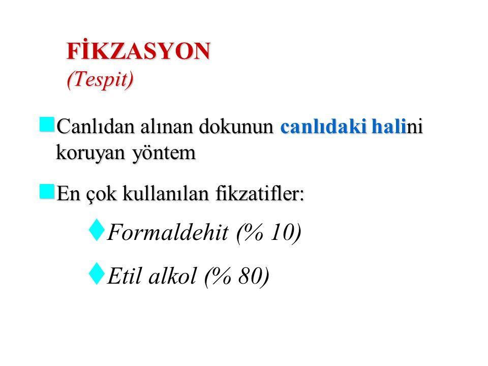 Effüzyon;  Transuda (fizyolojik-mekanik)  Eksuda (iltihap-tümör) Malign plevral effüzyon; AKC/MEME/GİS//MEZOTELYOMA/ LENFOMA Malign Peritoneal effüzyon  OVER/ MEME/ GİS  Malign perikardial effüzyon  AKC/ MEME/ LENFOMA/ SARKOM/ MEZOTELYOMA ****Etyolojisi bilinmeyen effüzyonlarda kadında genital sistem, erkekte GİS malignitesi düşünülmeli