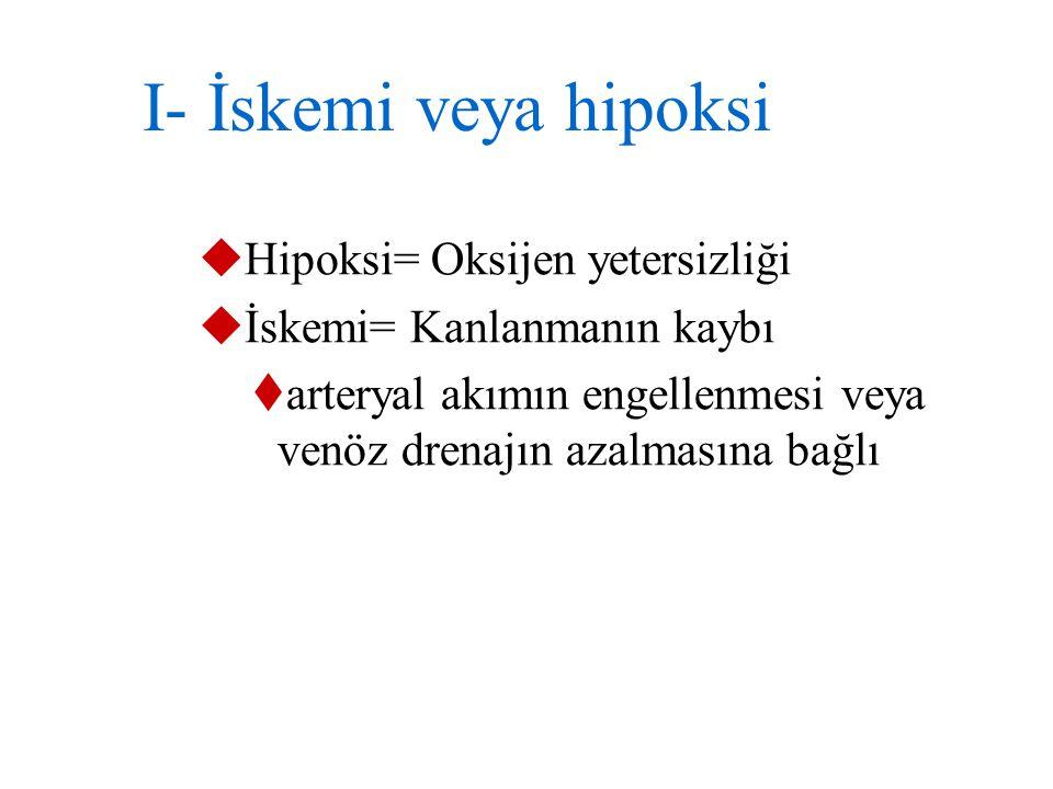 HÜCRE ZEDELENMESİNİN NEDENLERİ 1- İskemi ve hipoksi 2- Fiziksel etkenler (travma, ısı, basınç, elektrik, radyasyon) 3- Kimyasal zedelenmeler 4- Mikrob