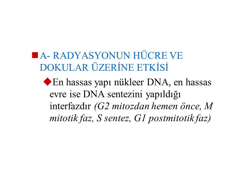 Radyasyonun hücreler üzerindeki etkisi;  Radyasyonun dozuna/ çizgisel enerji transferine/ salınma oranına/ ortamdaki O2 miktarına  Hücrelerin onarım