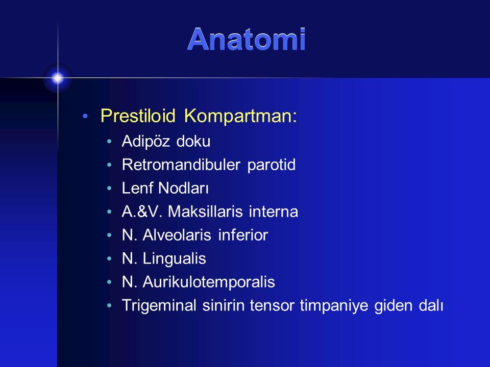 Prestiloid Kompartman: Adipöz doku Retromandibuler parotid Lenf Nodları A.&V. Maksillaris interna N. Alveolaris inferior N. Lingualis N. Aurikulotempo
