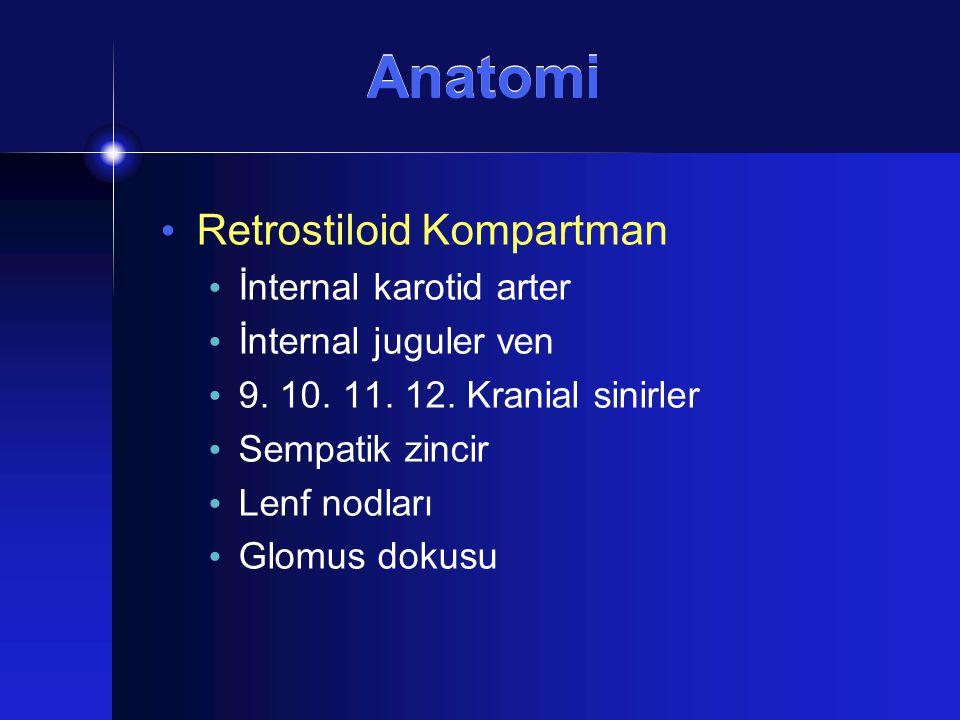 Retrostiloid Kompartman İnternal karotid arter İnternal juguler ven 9. 10. 11. 12. Kranial sinirler Sempatik zincir Lenf nodları Glomus dokusu