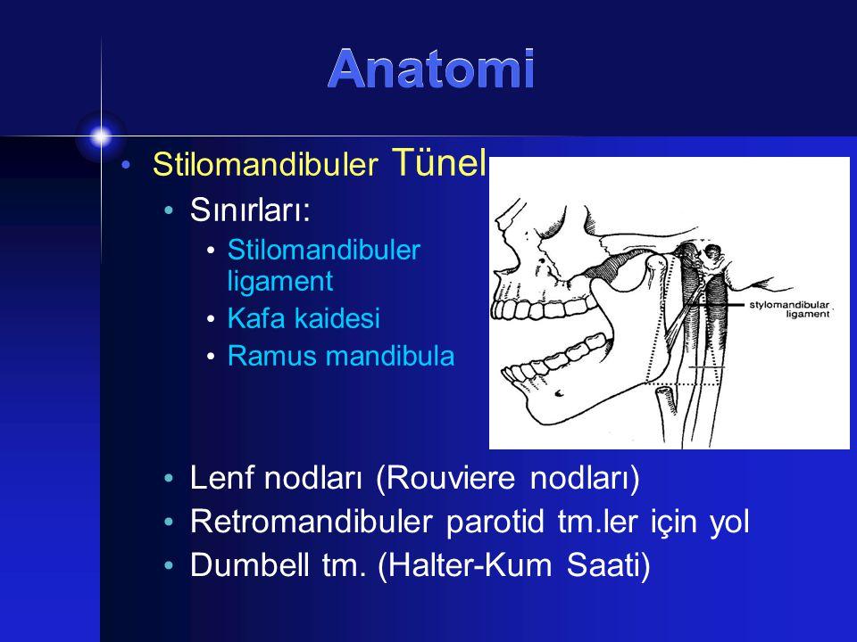 Stilomandibuler Tünel Sınırları: Stilomandibuler ligament Kafa kaidesi Ramus mandibula Lenf nodları (Rouviere nodları) Retromandibuler parotid tm.ler