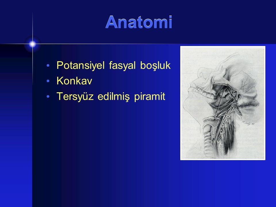 Görüntüleme Pleomorfik adenomlar Tipik benign kitle izlenimi Homojen, oval, şekilli Schwannomlar Fusiform şekilde, iyi sınırlı, kalsifikasyon içermeyen Paragangliomalar Heterojen sinyal: Tuz-biber görünümü Karotid arterler anteromediale