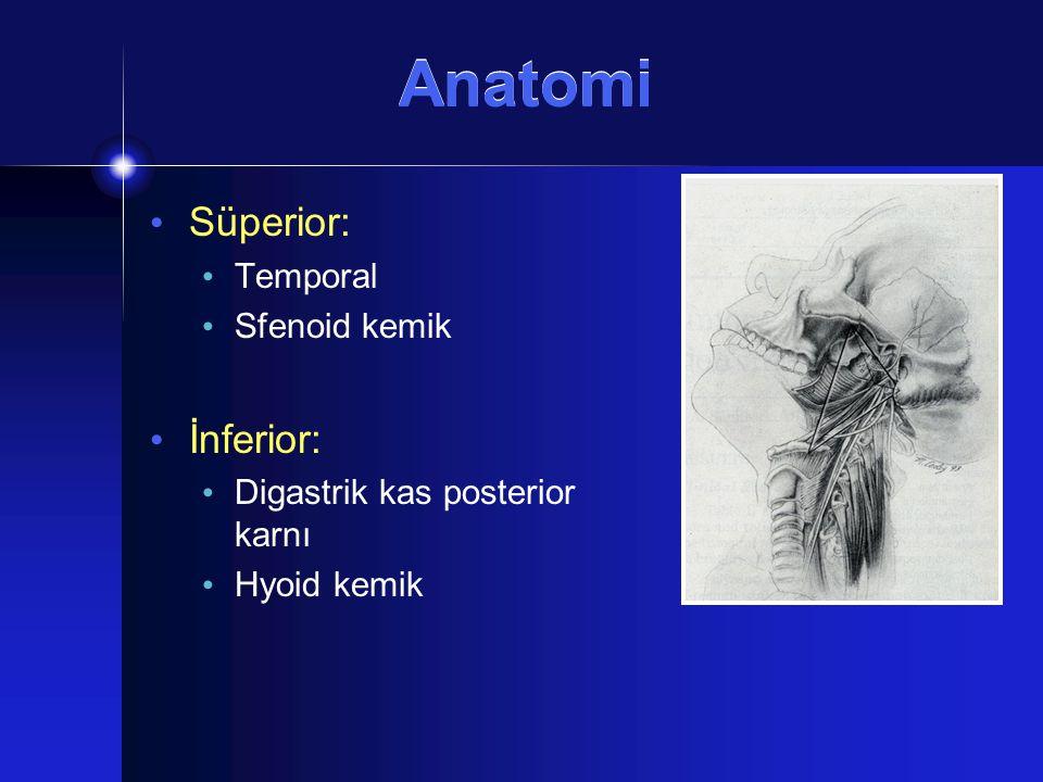 Patoloji Nörojenik Tümörler Paraganglioma MEN II  Medullar tiroid Ca  Feokromositoma  Paratiroid hiperplazi ve/ veya mukozal nöroma Kranial sinir paralizileri Kemik Erozyonu İntrakranial uzanım Pulzasyon (-/+)