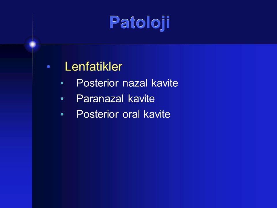 Patoloji Lenfatikler Posterior nazal kavite Paranazal kavite Posterior oral kavite