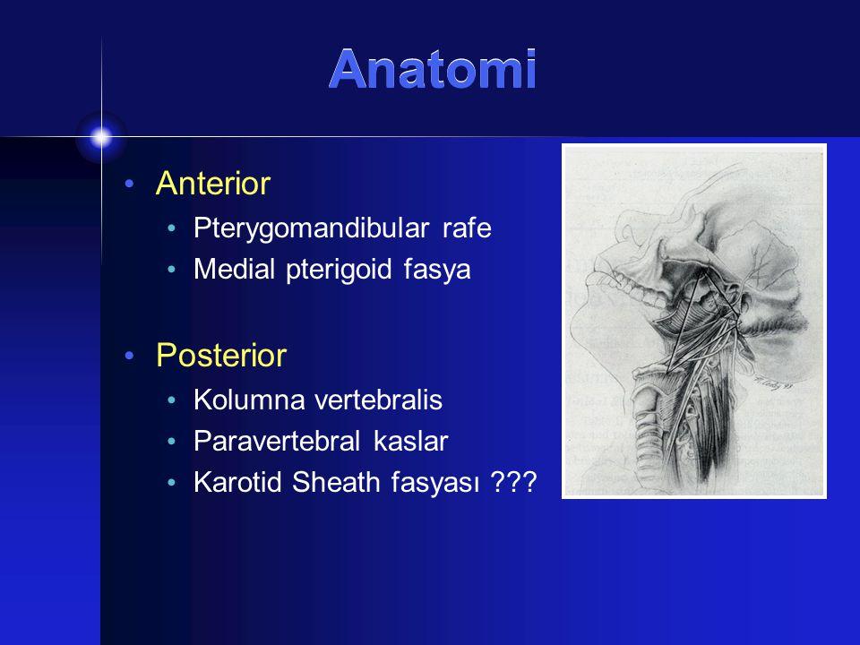 Stilomandibuler Tünel Sınırları: Stilomandibuler ligament Kafa kaidesi Ramus mandibula Lenf nodları (Rouviere nodları) Retromandibuler parotid tm.ler için yol Dumbell tm.