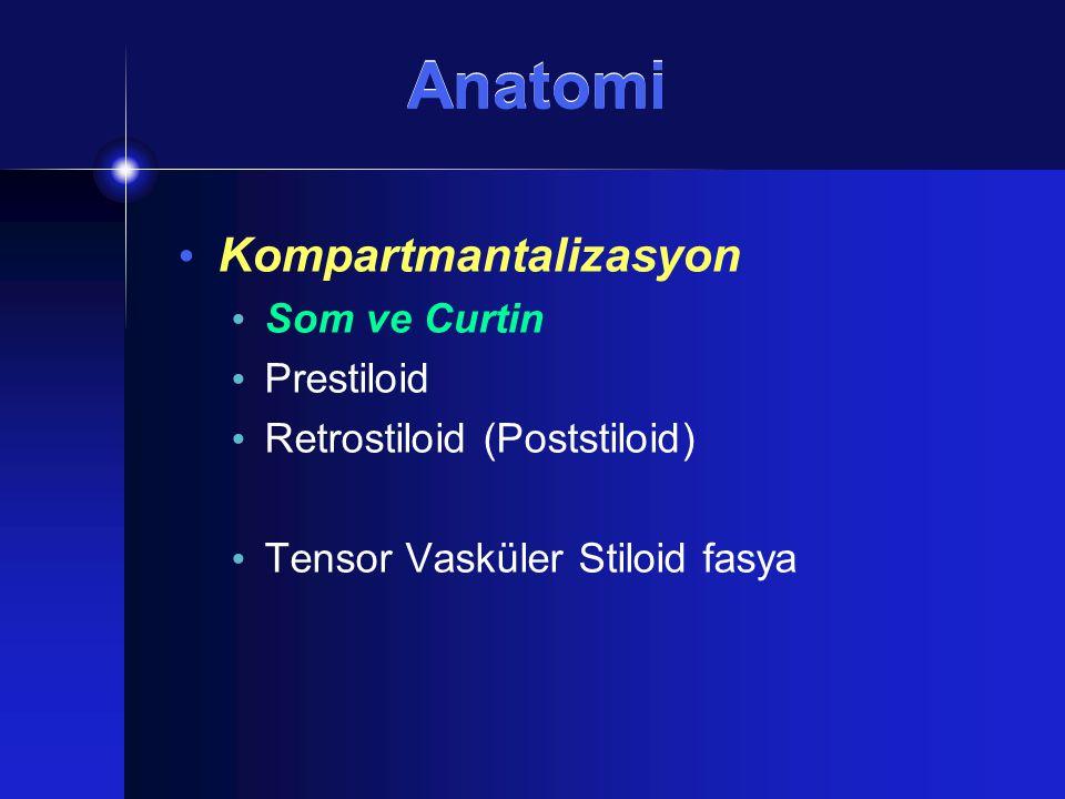 Cerrahi Transservikal-Transparotid Digastrik kas arka karnı Stiloglossus ve Stilohyoid kaslar Stilomandibuler ligament + Mandibulotomi İntrakranial uzanım Olsen  %80,  Postaurikuler insizyon  Suboksipital Kraniotomi