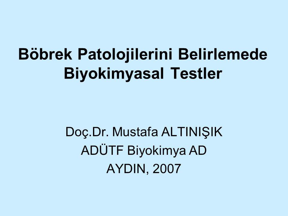 Böbrek Patolojilerini Belirlemede Biyokimyasal Testler Doç.Dr. Mustafa ALTINIŞIK ADÜTF Biyokimya AD AYDIN, 2007