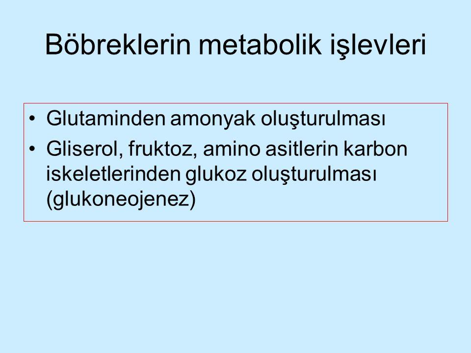 Böbreklerin metabolik işlevleri Glutaminden amonyak oluşturulması Gliserol, fruktoz, amino asitlerin karbon iskeletlerinden glukoz oluşturulması (gluk
