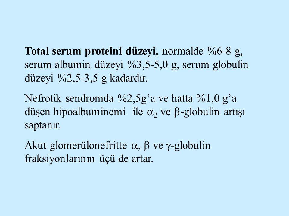 Total serum proteini düzeyi, normalde %6-8 g, serum albumin düzeyi %3,5-5,0 g, serum globulin düzeyi %2,5-3,5 g kadardır. Nefrotik sendromda %2,5g'a v