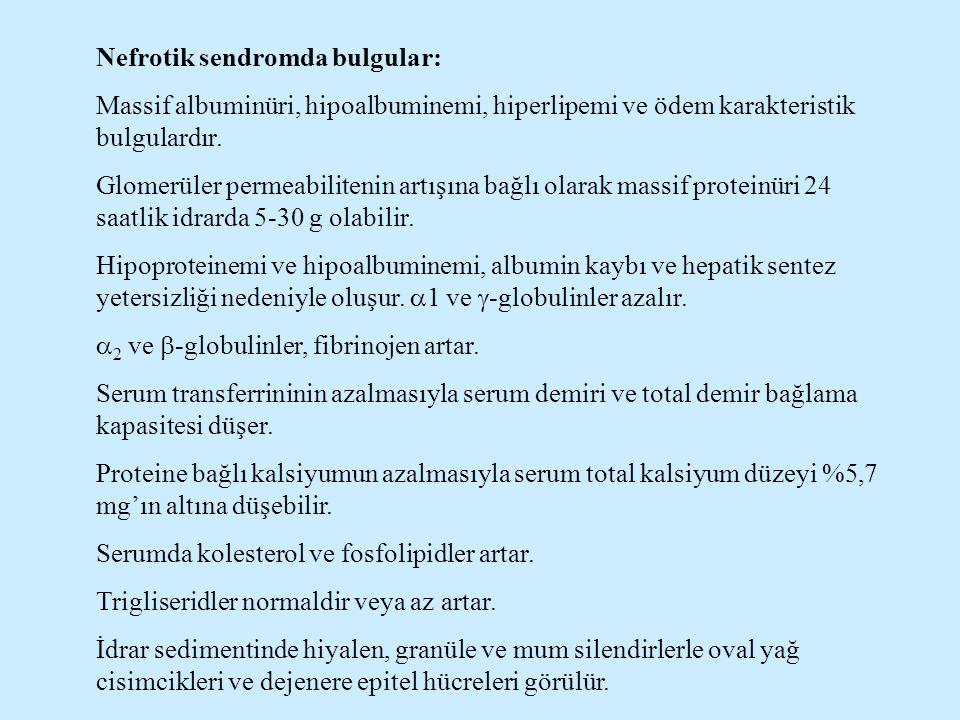 Nefrotik sendromda bulgular: Massif albuminüri, hipoalbuminemi, hiperlipemi ve ödem karakteristik bulgulardır. Glomerüler permeabilitenin artışına bağ