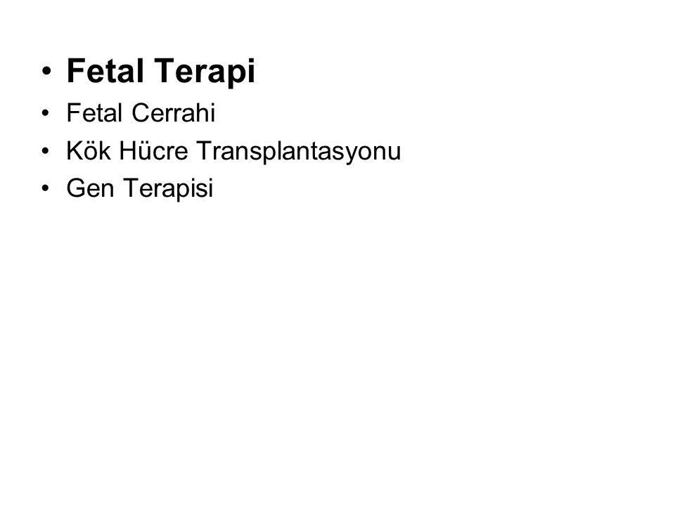 Fetal Terapi Fetal Cerrahi Kök Hücre Transplantasyonu Gen Terapisi