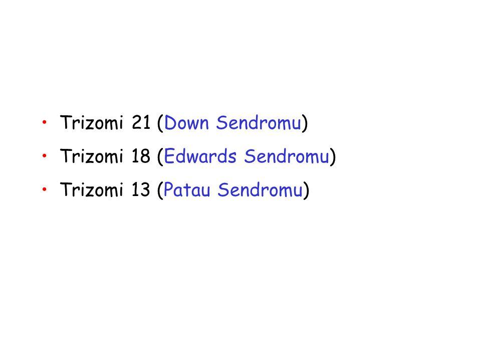 Trizomi 21 (Down Sendromu) Trizomi 18 (Edwards Sendromu) Trizomi 13 (Patau Sendromu)