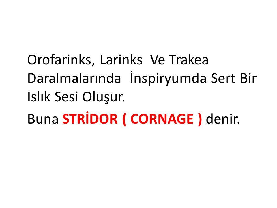 Orofarinks, Larinks Ve Trakea Daralmalarında İnspiryumda Sert Bir Islık Sesi Oluşur. Buna STRİDOR ( CORNAGE ) denir.