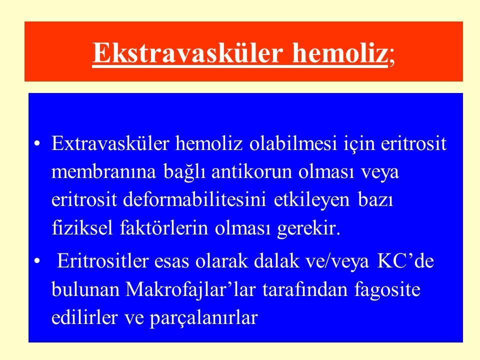 Ekstravasküler hemoliz; Extravasküler hemoliz olabilmesi için eritrosit membranına bağlı antikorun olması veya eritrosit deformabilitesini etkileyen b