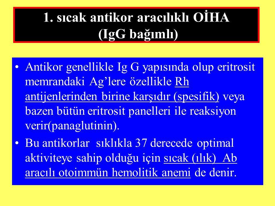 1. sıcak antikor aracılıklı OİHA (IgG bağımlı) Antikor genellikle Ig G yapısında olup eritrosit memrandaki Ag'lere özellikle Rh antijenlerinden birine