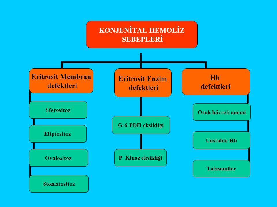 KONJENİTAL HEMOLİZ SEBEPLERİ Eritrosit Membran defektleri Sferositoz Eliptositoz Ovalositoz Stomatositoz Eritrosit Enzim defektleri G-6-PDH eksikliği