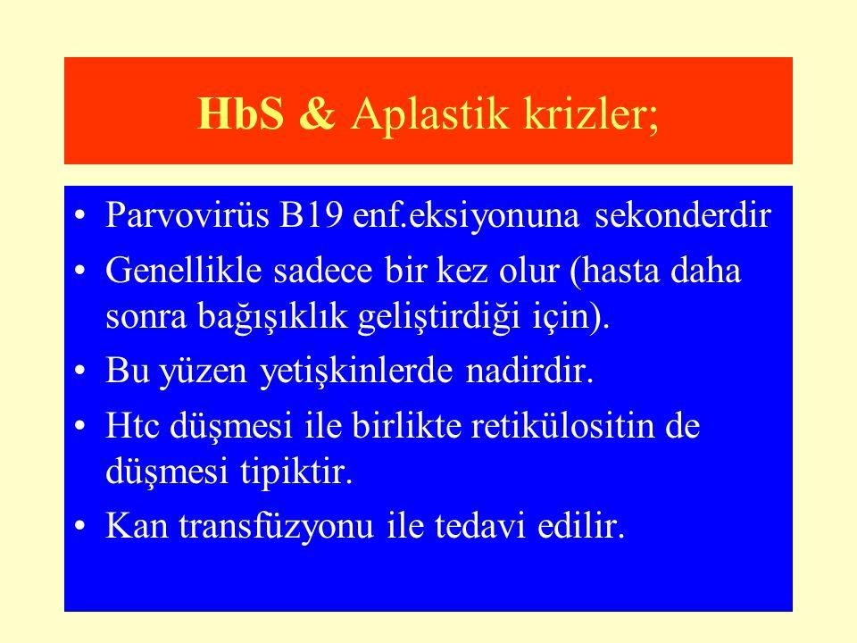 HbS & Aplastik krizler; Parvovirüs B19 enf.eksiyonuna sekonderdir Genellikle sadece bir kez olur (hasta daha sonra bağışıklık geliştirdiği için). Bu y