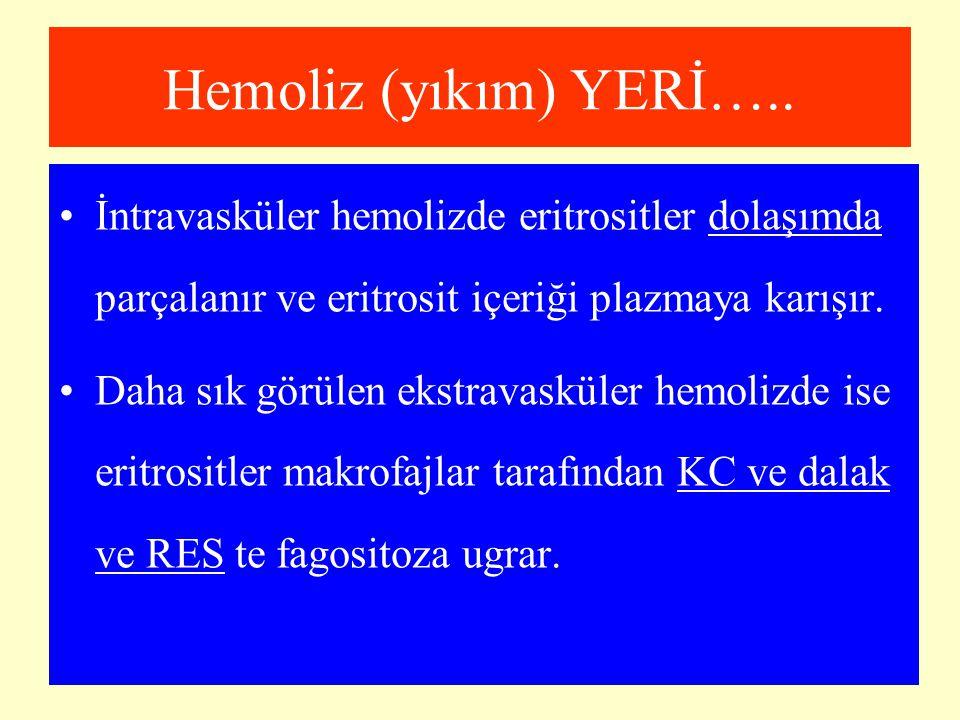 Hemoliz (yıkım) YERİ….. İntravasküler hemolizde eritrositler dolaşımda parçalanır ve eritrosit içeriği plazmaya karışır. Daha sık görülen ekstravaskül