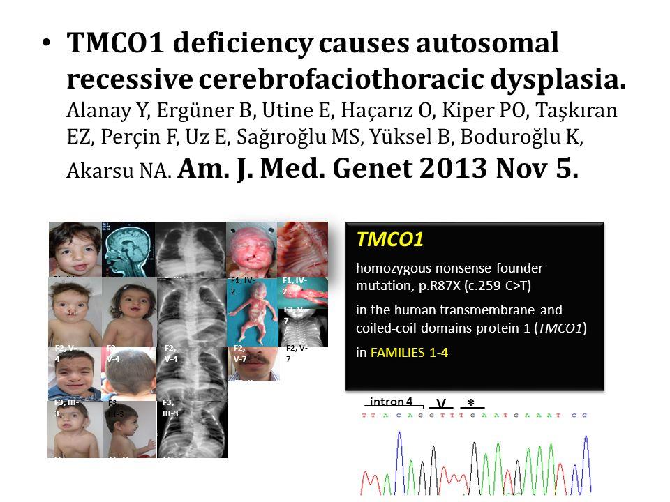 TMCO1 deficiency causes autosomal recessive cerebrofaciothoracic dysplasia. Alanay Y, Ergüner B, Utine E, Haçarız O, Kiper PO, Taşkıran EZ, Perçin F,