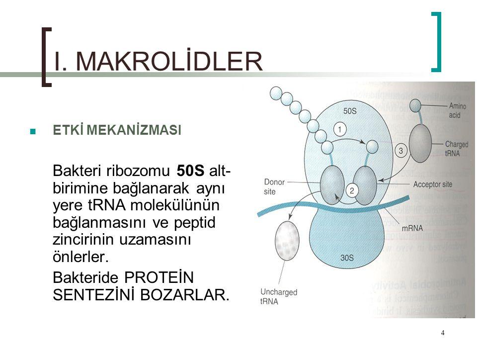 4 I. MAKROLİDLER ETKİ MEKANİZMASI Bakteri ribozomu 50S alt- birimine bağlanarak aynı yere tRNA molekülünün bağlanmasını ve peptid zincirinin uzamasını