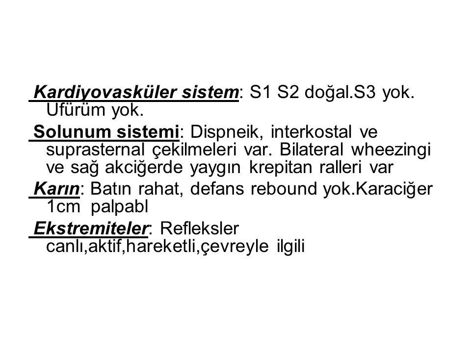 Kardiyovasküler sistem: S1 S2 doğal.S3 yok. Üfürüm yok. Solunum sistemi: Dispneik, interkostal ve suprasternal çekilmeleri var. Bilateral wheezingi ve