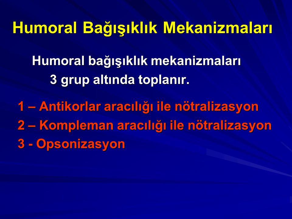 Humoral Bağışıklık Mekanizmaları Humoral bağışıklık mekanizmaları Humoral bağışıklık mekanizmaları 3 grup altında toplanır. 3 grup altında toplanır. 1