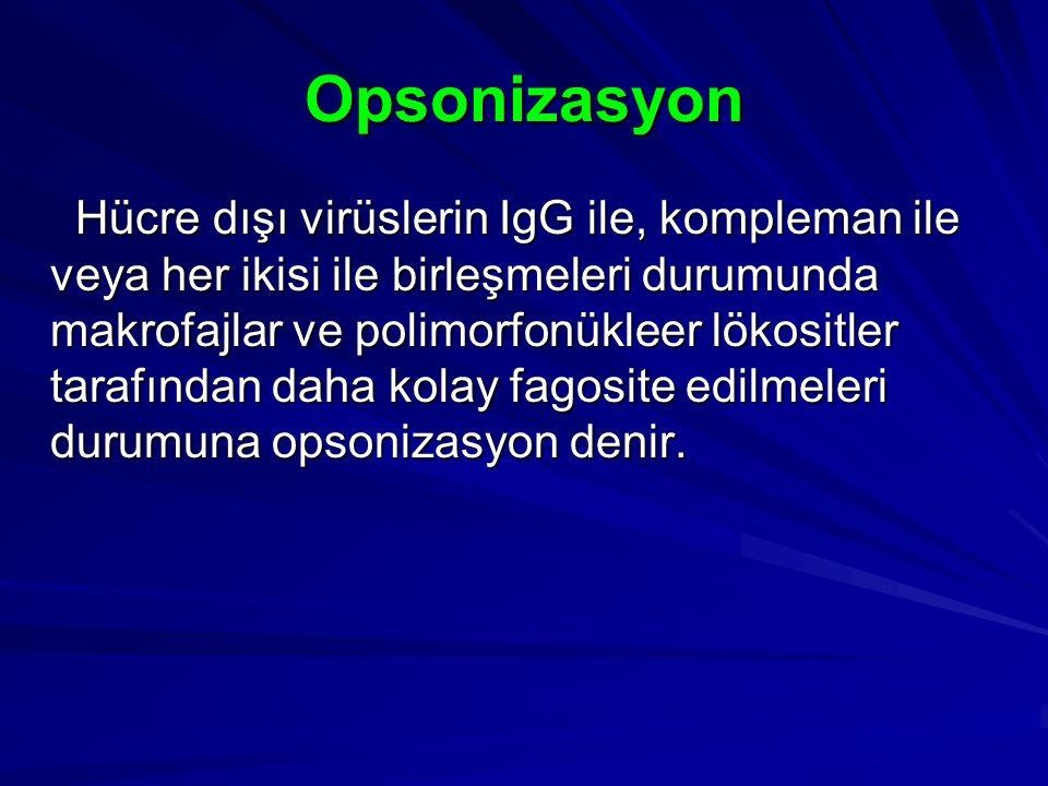 Opsonizasyon Hücre dışı virüslerin IgG ile, kompleman ile veya her ikisi ile birleşmeleri durumunda makrofajlar ve polimorfonükleer lökositler tarafın