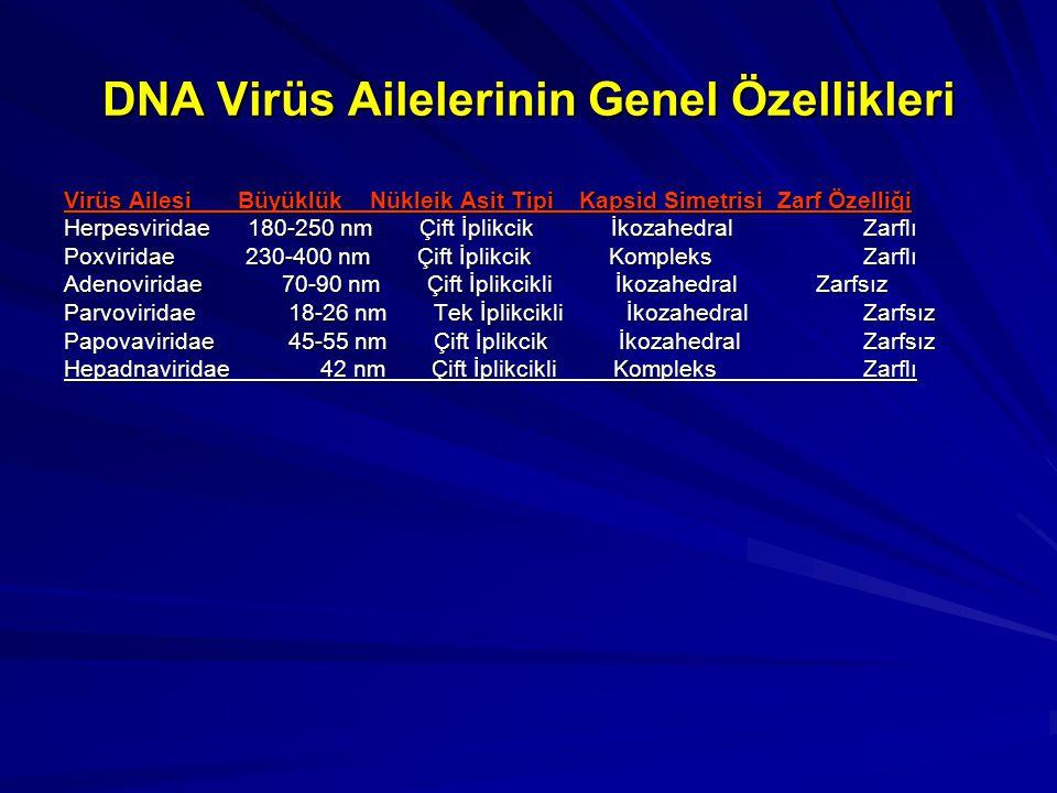 DNA Virüs Ailelerinin Genel Özellikleri Virüs Ailesi Büyüklük Nükleik Asit Tipi Kapsid Simetrisi Zarf Özelliği Herpesviridae 180-250 nm Çift İplikcik