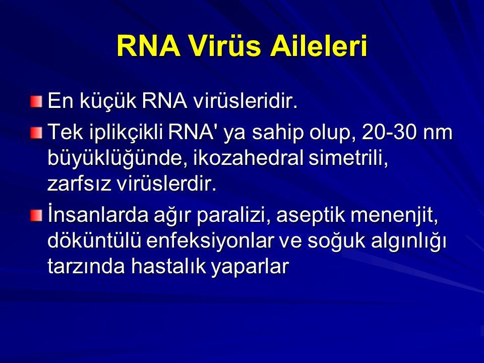 RNA Virüs Aileleri En küçük RNA virüsleridir. Tek iplikçikli RNA' ya sahip olup, 20-30 nm büyüklüğünde, ikozahedral simetrili, zarfsız virüslerdir. İn
