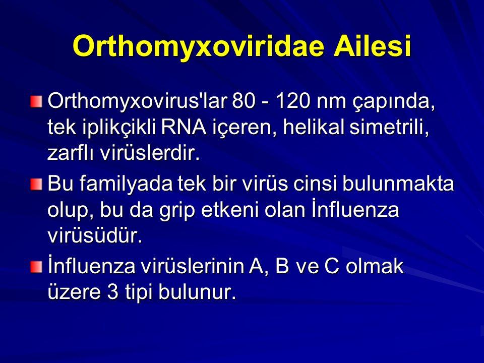 Orthomyxoviridae Ailesi Orthomyxovirus'lar 80 - 120 nm çapında, tek iplikçikli RNA içeren, helikal simetrili, zarflı virüslerdir. Bu familyada tek bir