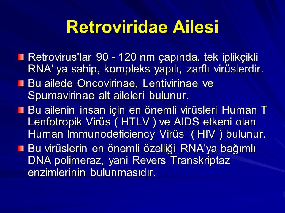 Retroviridae Ailesi Retrovirus'lar 90 - 120 nm çapında, tek iplikçikli RNA' ya sahip, kompleks yapılı, zarflı virüslerdir. Bu ailede Oncovirinae, Lent