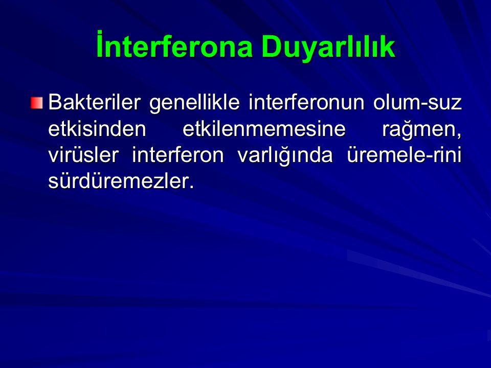 İnterferona Duyarlılık Bakteriler genellikle interferonun olum-suz etkisinden etkilenmemesine rağmen, virüsler interferon varlığında üremele-rini sürd