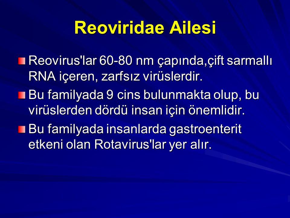 Reoviridae Ailesi Reovirus'lar 60-80 nm çapında,çift sarmallı RNA içeren, zarfsız virüslerdir. Bu familyada 9 cins bulunmakta olup, bu virüslerden dör