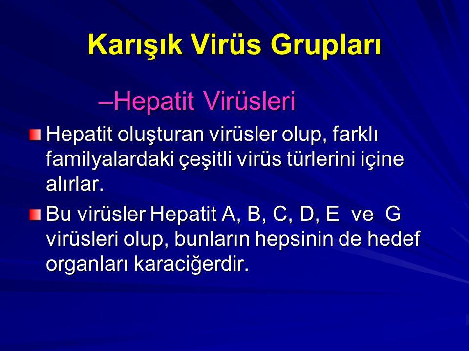 Karışık Virüs Grupları –Hepatit Virüsleri Hepatit oluşturan virüsler olup, farklı familyalardaki çeşitli virüs türlerini içine alırlar. Bu virüsler He