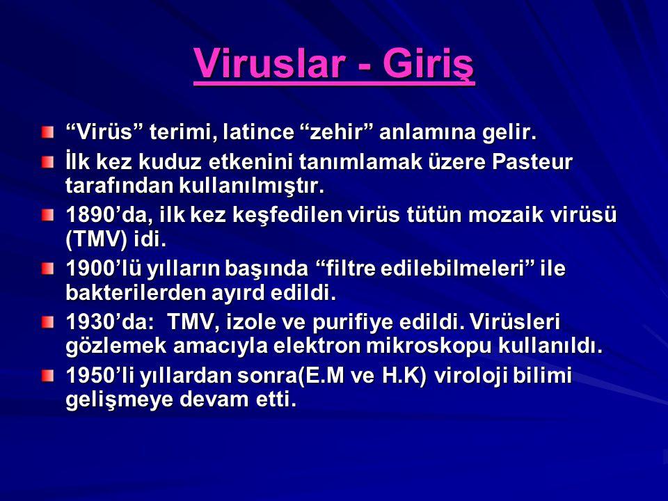 """Viruslar - Giriş """"Virüs"""" terimi, latince """"zehir"""" anlamına gelir. İlk kez kuduz etkenini tanımlamak üzere Pasteur tarafından kullanılmıştır. 1890'da, i"""